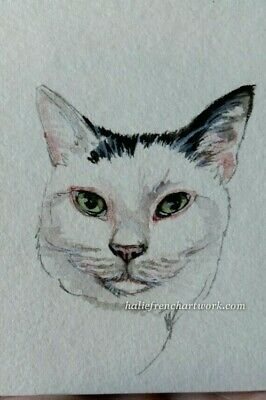 Original Watercolor Painting Pet Art Black & White Kitty Cat ACEO Halie French