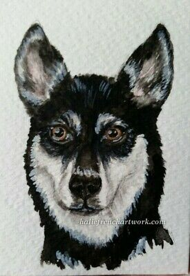 Watercolor Painting Original Pet Art Husky Dog Wolf Howl Pup ACEO Halie French