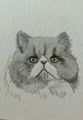 Watercolor Painting Original Cat aceo Grey Persian Kitty Pet Art Halie French
