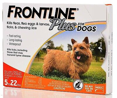 Frontline Plus for Dogs 0-22 lbs Orange 3 Month Supply 3-Pack  #Shipping Free