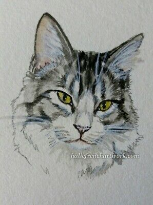 ORIGINAL WATERCOLOR PAINTING ACEO CAT MAINCOON FLUFFY PET PORTRAIT HalieFrench