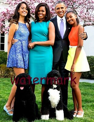 President Barack Obama W/ Family & Dogs On The White House Lawn Publicity Photo