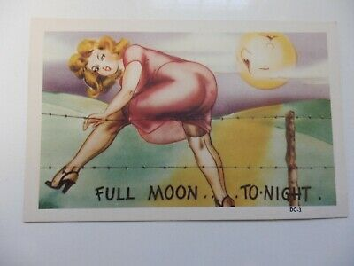 1940'S Postcard Man In The Moon Full Moon Damsel Caught In Barbed Wire - Unused