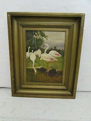 Early 20th Century Oil Painting on Board Depicting Group of Flamingo's, 1919