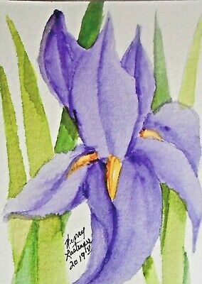 COLORFUL ABSTRACT PURPLE IRIS -  ORIGINAL ACEO WATERCOLOR by HENRY LASTRAPES