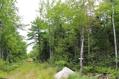 10.09 Acre Lot in Hancock County ME