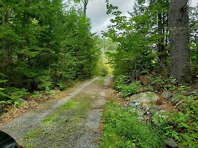 11 Acre Lot in Hancock County ME