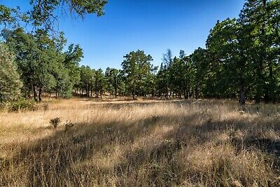 5.14 Acre Lot in Shasta County CA