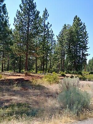 4.82 Acre Lot in Shasta County CA
