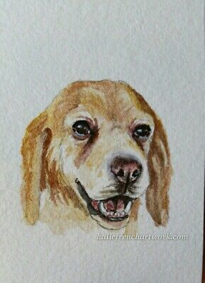 Original Watercolor Painting ACEO Dog Yellow Labrador Golden retriever H. French