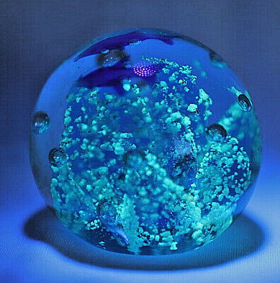 Blue Coral Paperweight with Dolphins/Glow In The Dark/Handcrafted/Hand Blown 6cm