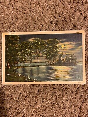 "Vintage Postcard ""Moonlight"" - C.T. Moonlight Series"