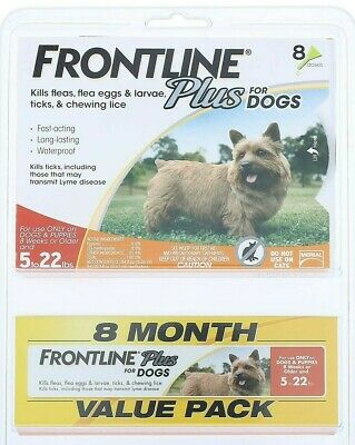 FRONTLINE Plus for Dogs - 8 Month Supply - 8 Dose Value Pack (5 - 22 lbs) NEW!
