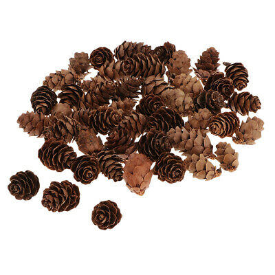 60Mini Natural Dried Pine Cones For Christmas Party Ornament DIY Vase Filler