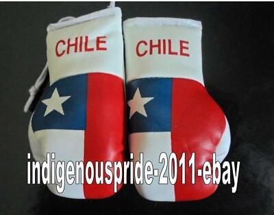 Chile Flag//Chilean mini boxing gloves for your car mirror-Get the best.