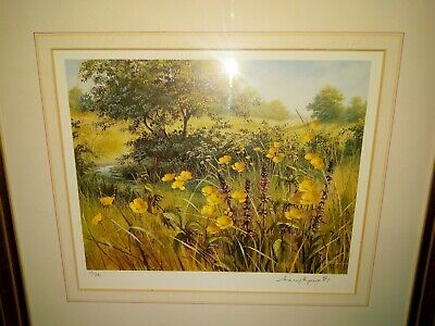 Limited Edition of 200 signed `wildflowers / buttercups Print by Mary Dipnall