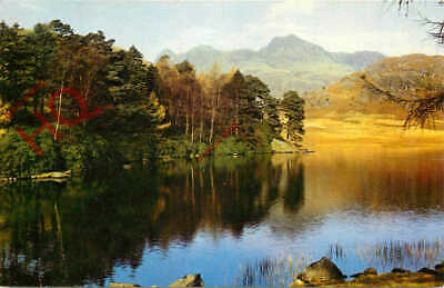 Picture Postcard, English Lake District, Blea Tarn And Langdale Pikes
