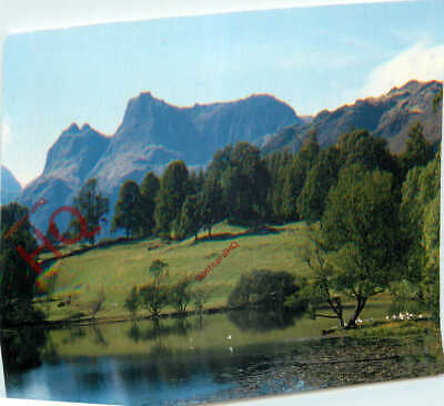 Postcard~ English Lake District, Langdale Pikes Reflected In Loughrigg Tarn