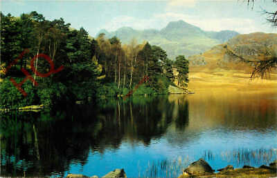 Picture Postcard> English Lake District, Blea Tarn And Langdale Pikes