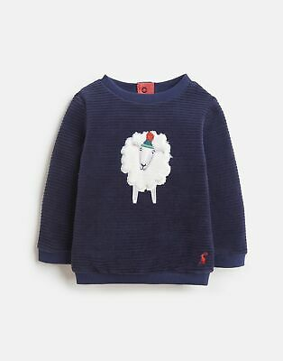 Joules Baby Billy Textured Sweatshirt in NAVY FLUFFY SHEEP