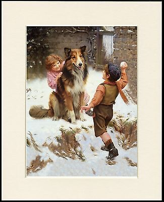 Rough Collie Lovely Little Dog Print Children Snow Mounted Ready To Frame