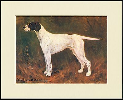 Pointer Old Named Champion Dog Lovely Print Mounted Ready To Frame