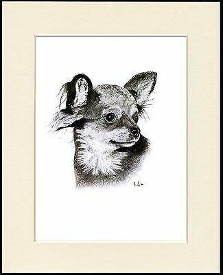 CHIHUAHUA TWO LITTLE DOGS LOVELY DOG PRINT MOUNTED READY TO FRAME