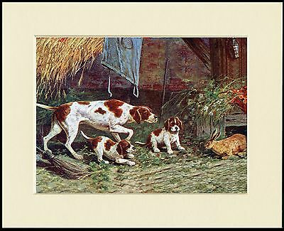 Pointer Pups And Rabbit Cute Little Dog Print Mounted Dog Print Ready To Frame