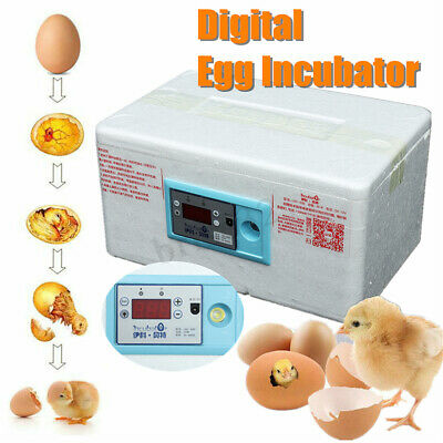 20 Egg Automatic Digital Incubator Chicken Poultry Hatcher Temperature