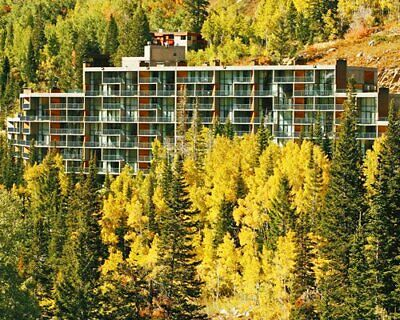 The Iron Blosam Lodge At Snowbird ~ Annual Suite ~ Free 2020 Usage