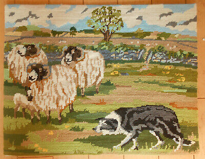 Primavera Sheepdog Completed Needlepoint Tapestry