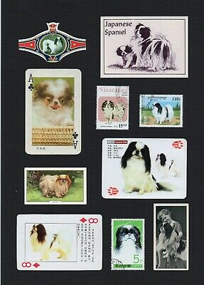 Japanese Chin Mounted Collection  Of Vintage Dog Cards Stamps & Bands Great Gift