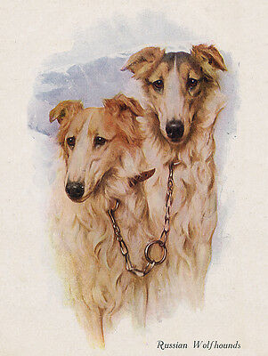 BORZOI CHARMING DOG GREETINGS NOTE CARD LADY AND TWO BEAUTIFUL DOGS