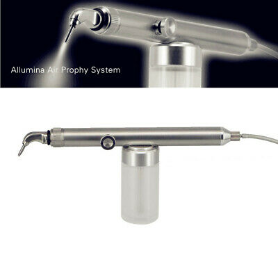 Dental Alumina Air Abrasion Polisher Microetcher Sandblasting Handpiece 2Tips 4H