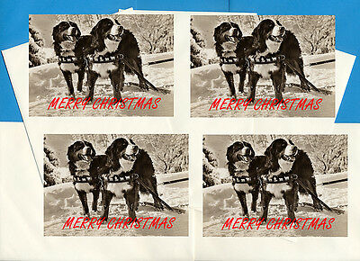 Bernese Mountain Dog Pack Of 4 Cards Dog Print Greeting Christmas Cards