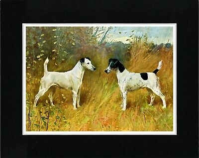 SMOOTH FOX TERRIER DOGS VINTAGE STYLE DOG ART PRINT MATTED READY TO FRAME