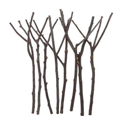 8x Dried Tree Wooden Branch Plant Sticks DIY Art Craft Wedding Party Home Decor