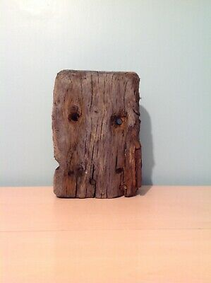 Beautiful large driftwood, very solid piece, probably oak