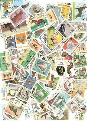100 Domestic Animals Stamps All Different Nice Lot