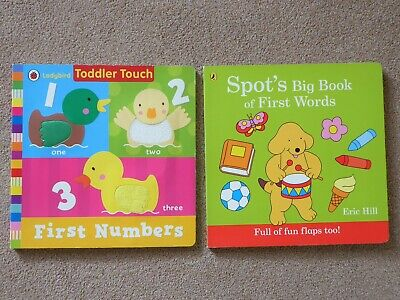Two large lift-the-flap board books for babies / toddlers, VGC