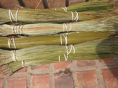 """Long leaf pine needles for basket weaving   1 1/2 lb   dried inside  14 to 18"""""""