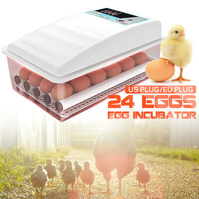 Dual power Supply 24 Eggs Turning Incubators Digital Poultry Chicken Hatcher  Y