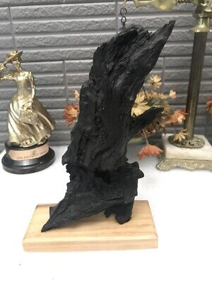 Vietnam Wood Carved Handmade 3D Art Decor Desk From Old Roots