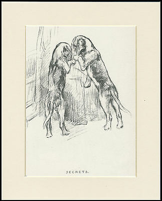 SLEEPING MASTIFF LOVELY OLD 1930/'S DOG SKETCH PRINT by KF BARKER READY MOUNTED