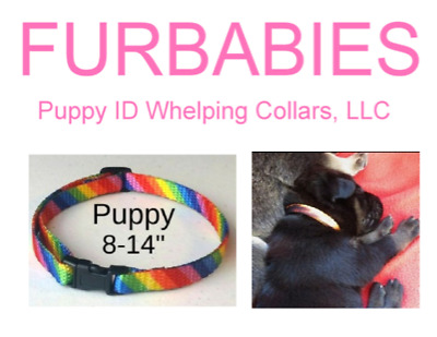 FURBABIES-Puppy ID Whelping Band Collars. Breakaway! U-Pick!  Easily Adjusts.