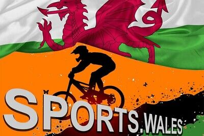SPORTS.WALES Domain Name & Website ( £12 per year to renew)