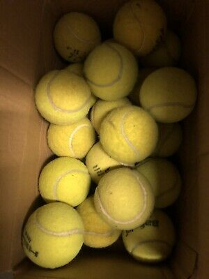 20 Clean Tennis Balls For Dogs