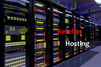 Master Reseller Hosting FREE Unlimited SSL's cPanel/WHM Zamfoo 24/7 support