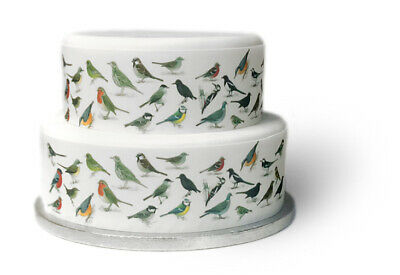 A4 Edible Decor Icing Sheet British Garden BIRDS Ribbon Border for larger cake
