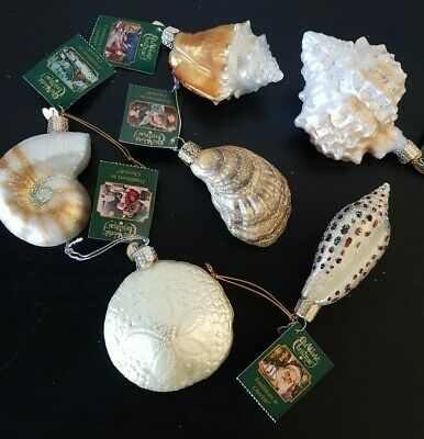OLD WORLD CHRISTMAS LOT of 6 SHELL SEASHELL Oyster Sand Dollar Glass Ornaments